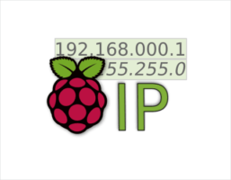 ip estatica con no-ip desde linux